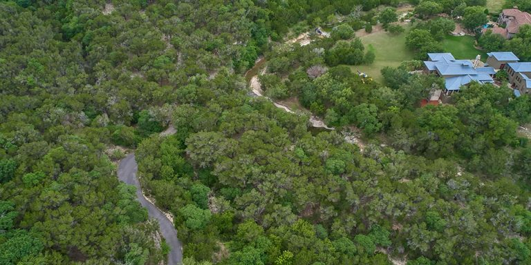 Numerous trees and aerial view at Paraiso